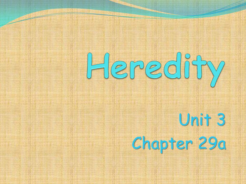 Unit 3 Chapter 29a
