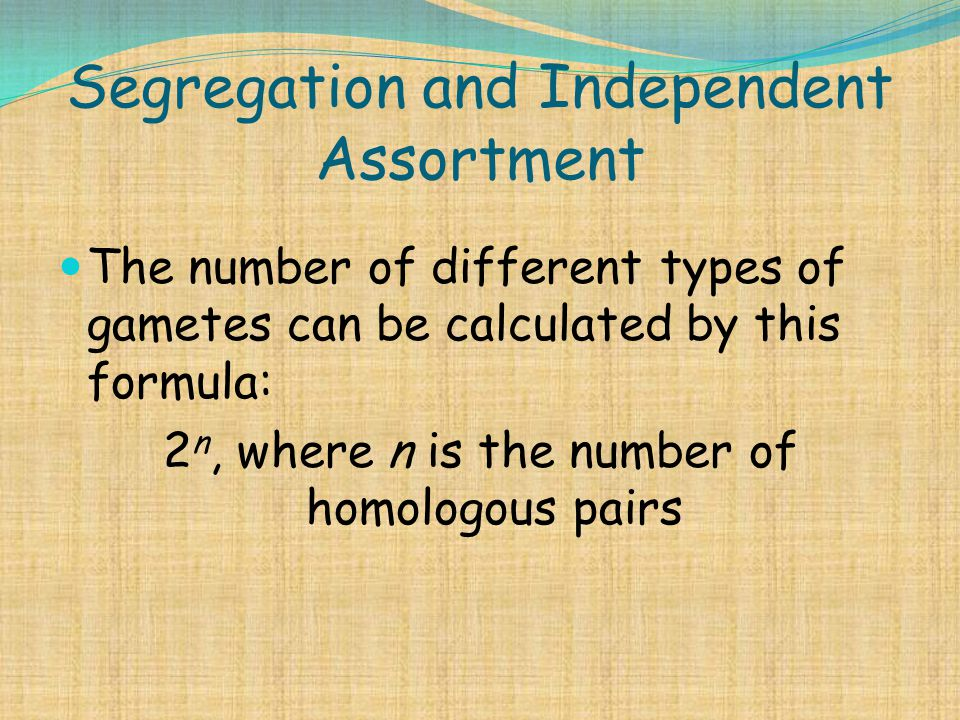 Segregation and Independent Assortment The number of different types of gametes can be calculated by this formula: 2 n, where n is the number of homol