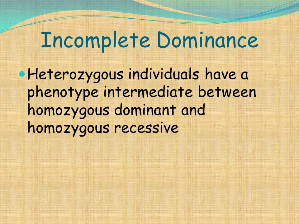 Incomplete Dominance Heterozygous individuals have a phenotype intermediate between homozygous dominant and homozygous recessive