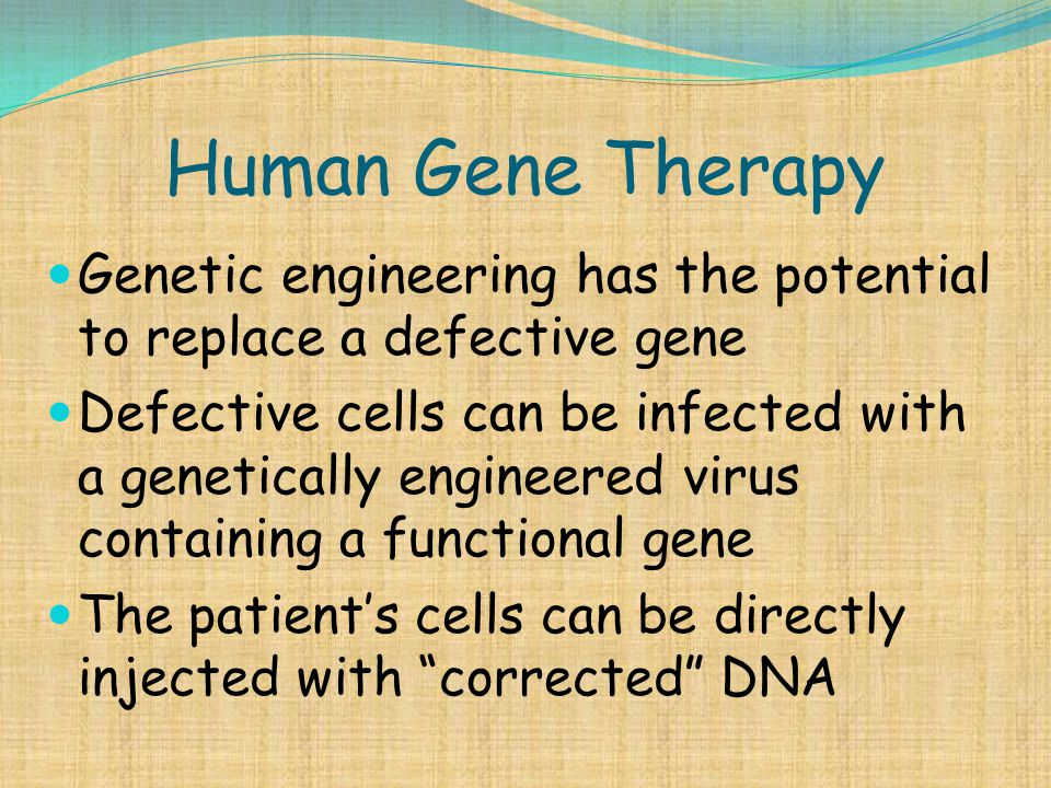 Human Gene Therapy Genetic engineering has the potential to replace a defective gene Defective cells can be infected with a genetically engineered vir