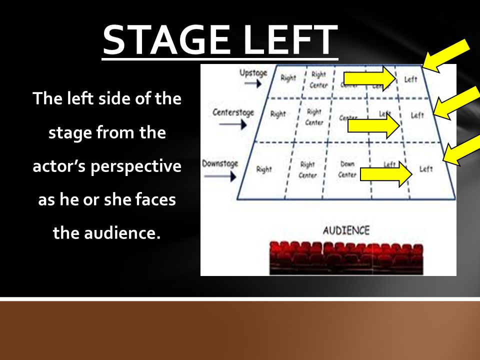 STAGE LEFT The left side of the stage from the actor's perspective as he or she faces the audience.