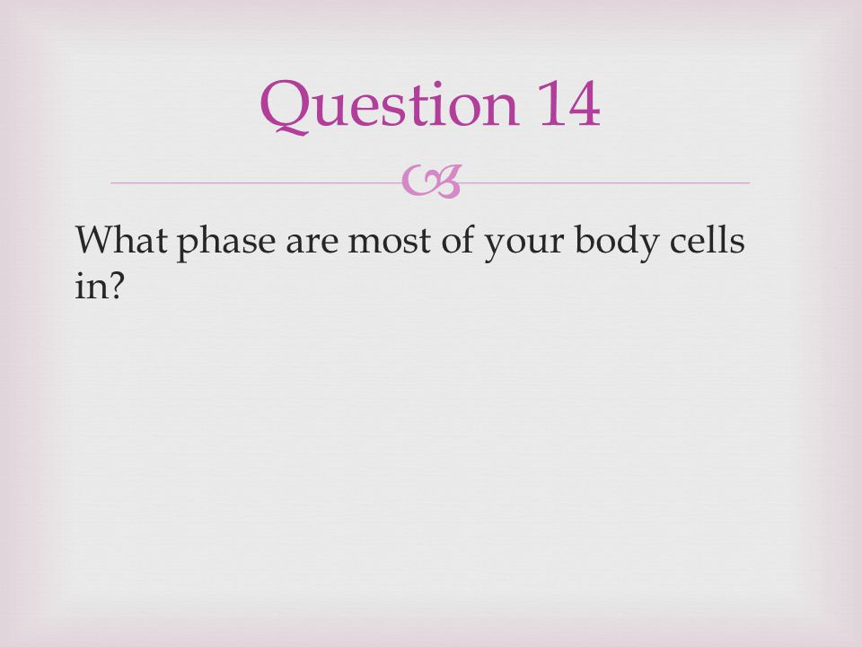  What phase are most of your body cells in? Question 14