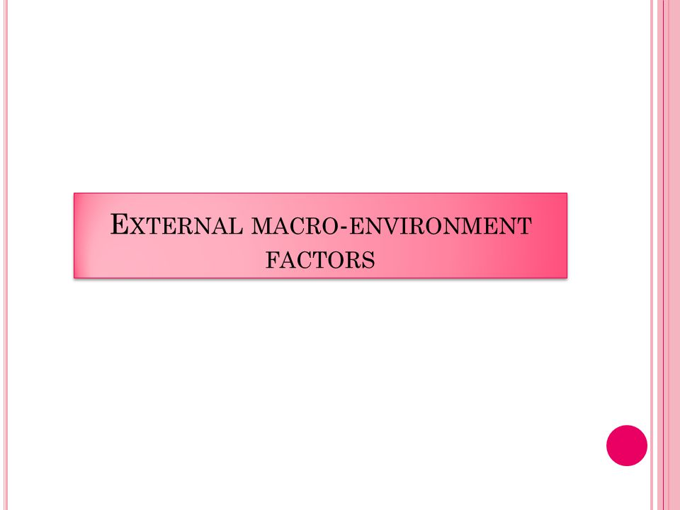 E XTERNAL MACRO - ENVIRONMENT FACTORS