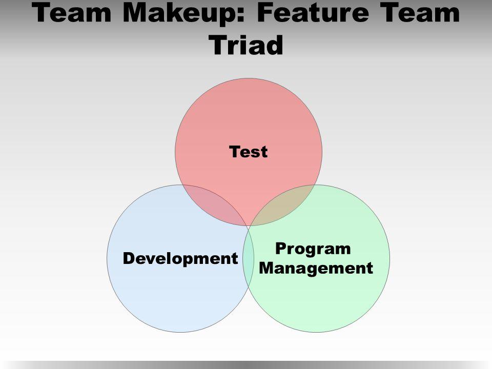 Development Test Team Makeup: Feature Team Triad Program Management