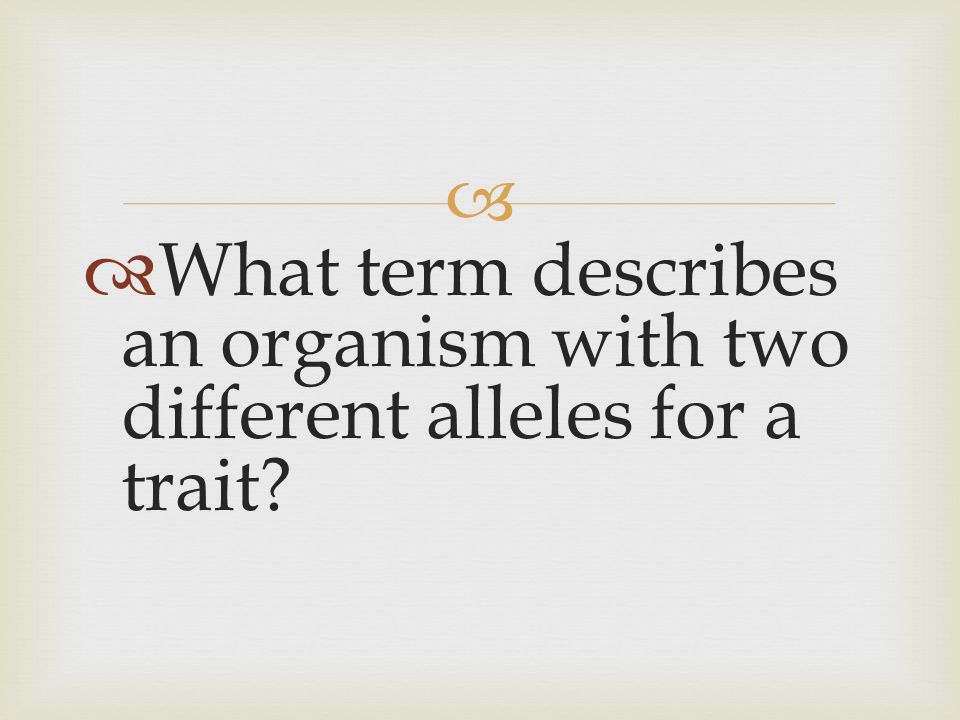   What term describes an organism with two different alleles for a trait?