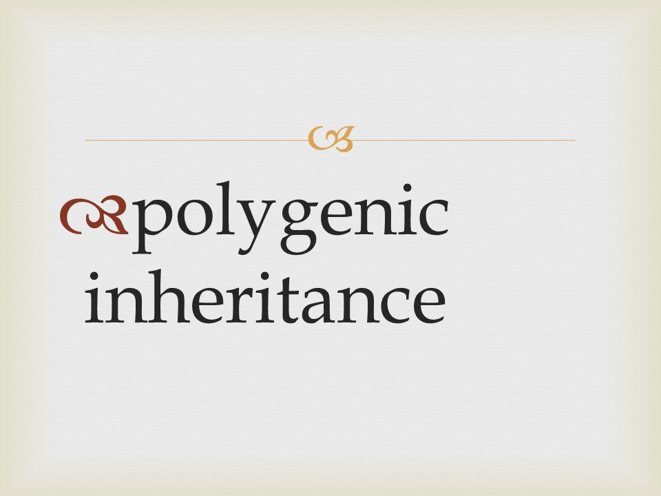   polygenic inheritance