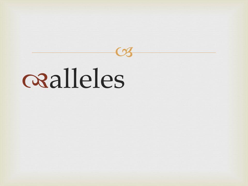   alleles