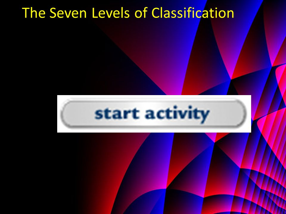 The Seven Levels of Classification