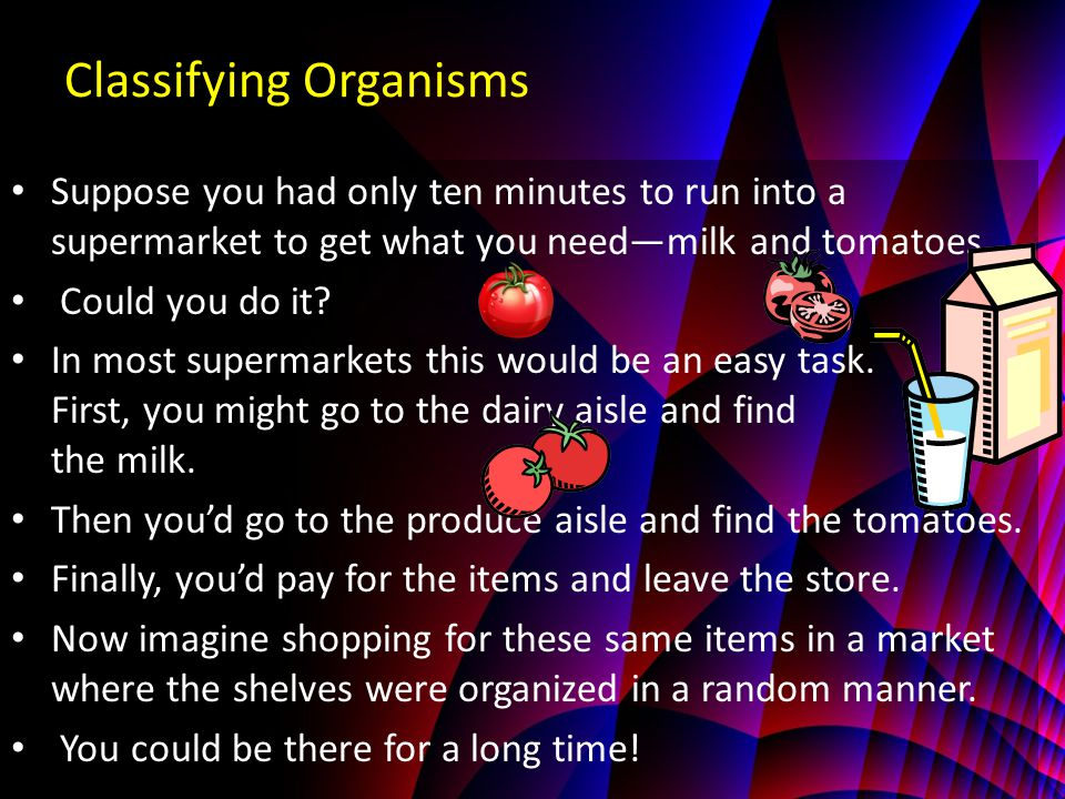 Classifying Organisms Suppose you had only ten minutes to run into a supermarket to get what you need—milk and tomatoes.