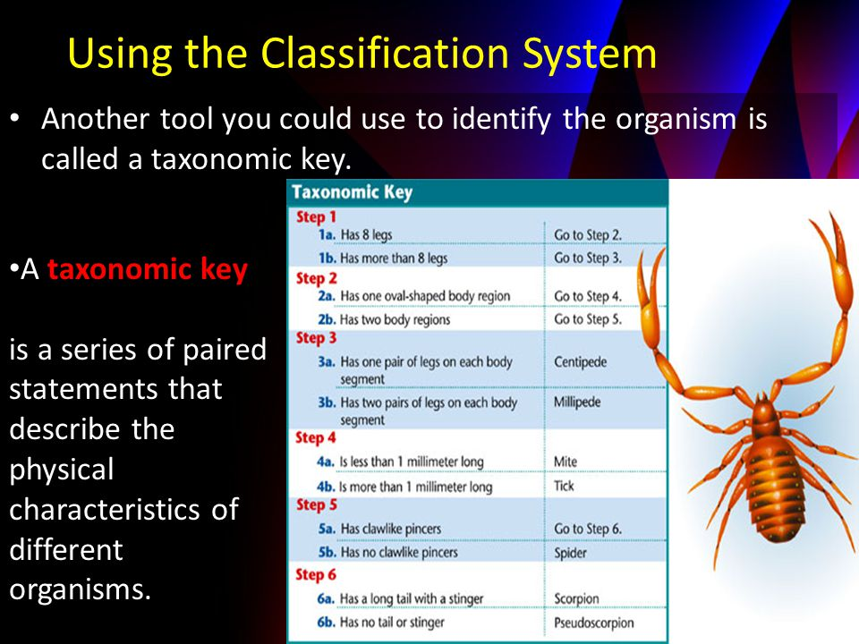 Another tool you could use to identify the organism is called a taxonomic key. Using the Classification System A taxonomic key is a series of paired s