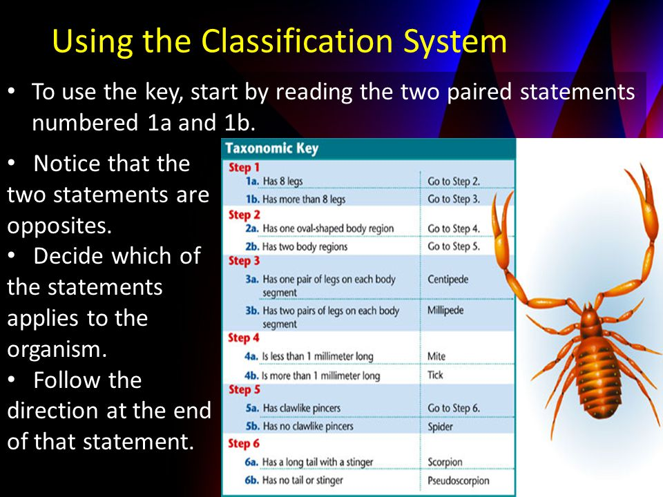 To use the key, start by reading the two paired statements numbered 1a and 1b.