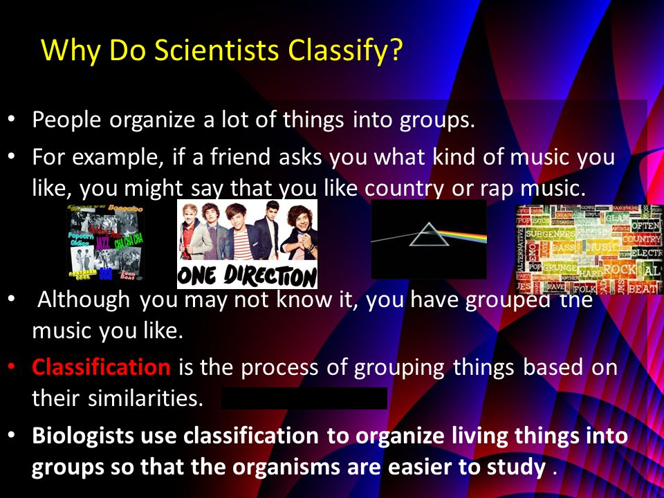 Why Do Scientists Classify.People organize a lot of things into groups.