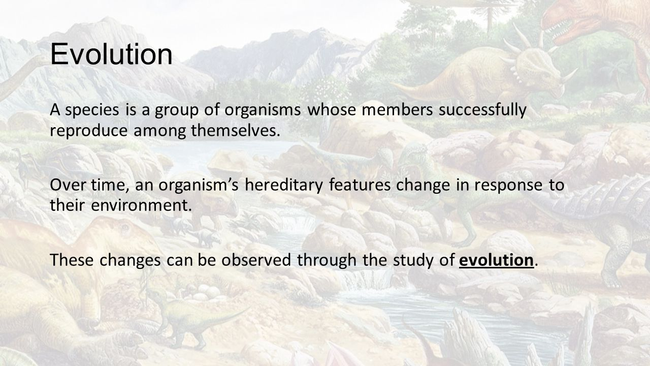 Evolution A species is a group of organisms whose members successfully reproduce among themselves. Over time, an organism's hereditary features change