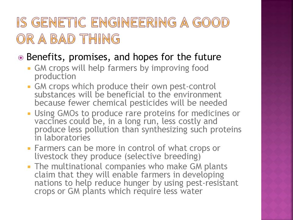  Benefits, promises, and hopes for the future  GM crops will help farmers by improving food production  GM crops which produce their own pest-control substances will be beneficial to the environment because fewer chemical pesticides will be needed  Using GMOs to produce rare proteins for medicines or vaccines could be, in a long run, less costly and produce less pollution than synthesizing such proteins in laboratories  Farmers can be more in control of what crops or livestock they produce (selective breeding)  The multinational companies who make GM plants claim that they will enable farmers in developing nations to help reduce hunger by using pest-resistant crops or GM plants which require less water
