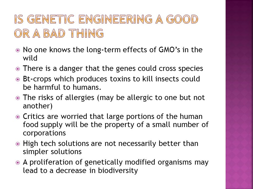  No one knows the long-term effects of GMO's in the wild  There is a danger that the genes could cross species  Bt-crops which produces toxins to kill insects could be harmful to humans.