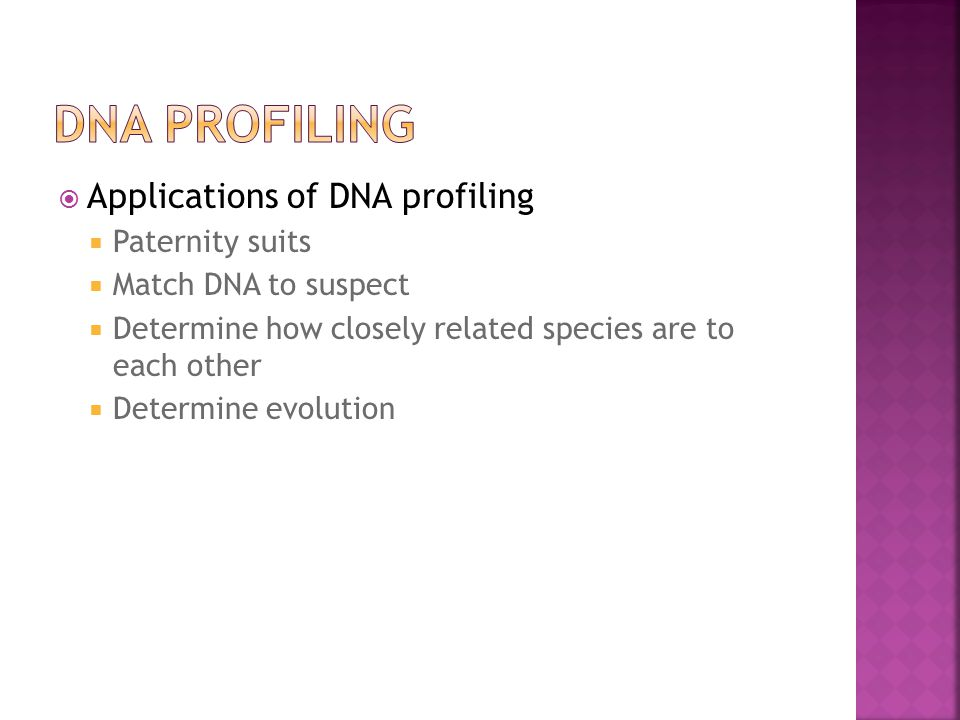  Applications of DNA profiling  Paternity suits  Match DNA to suspect  Determine how closely related species are to each other  Determine evolution
