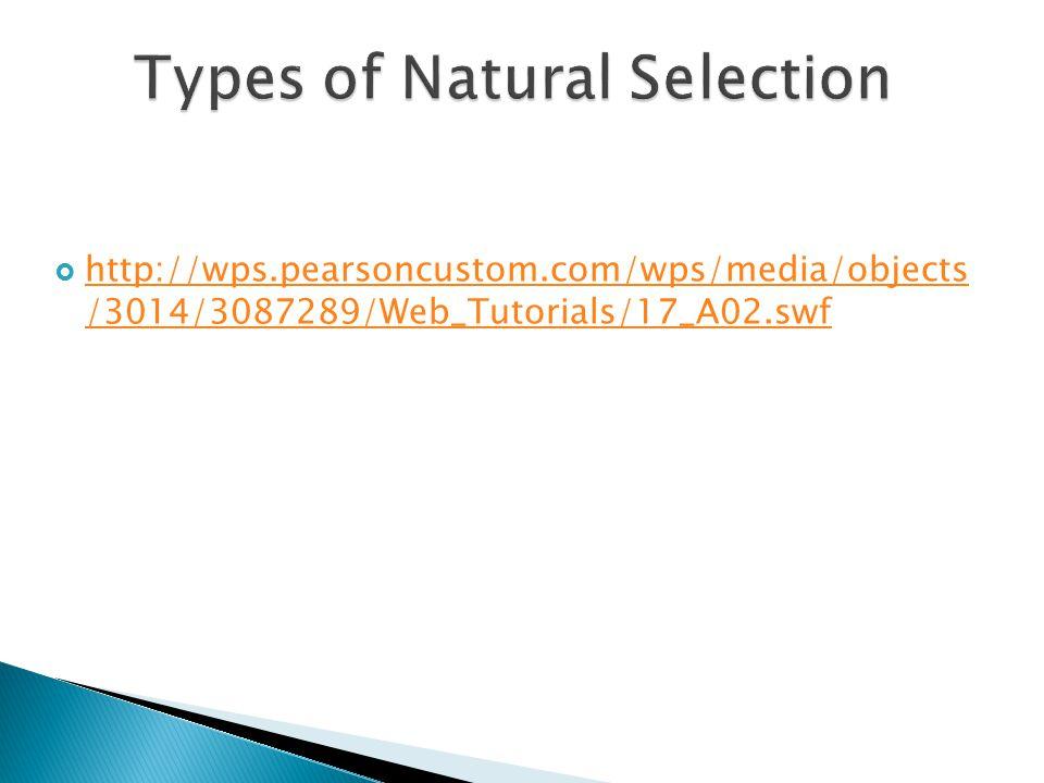  http://wps.pearsoncustom.com/wps/media/objects /3014/3087289/Web_Tutorials/17_A02.swf http://wps.pearsoncustom.com/wps/media/objects /3014/3087289/W