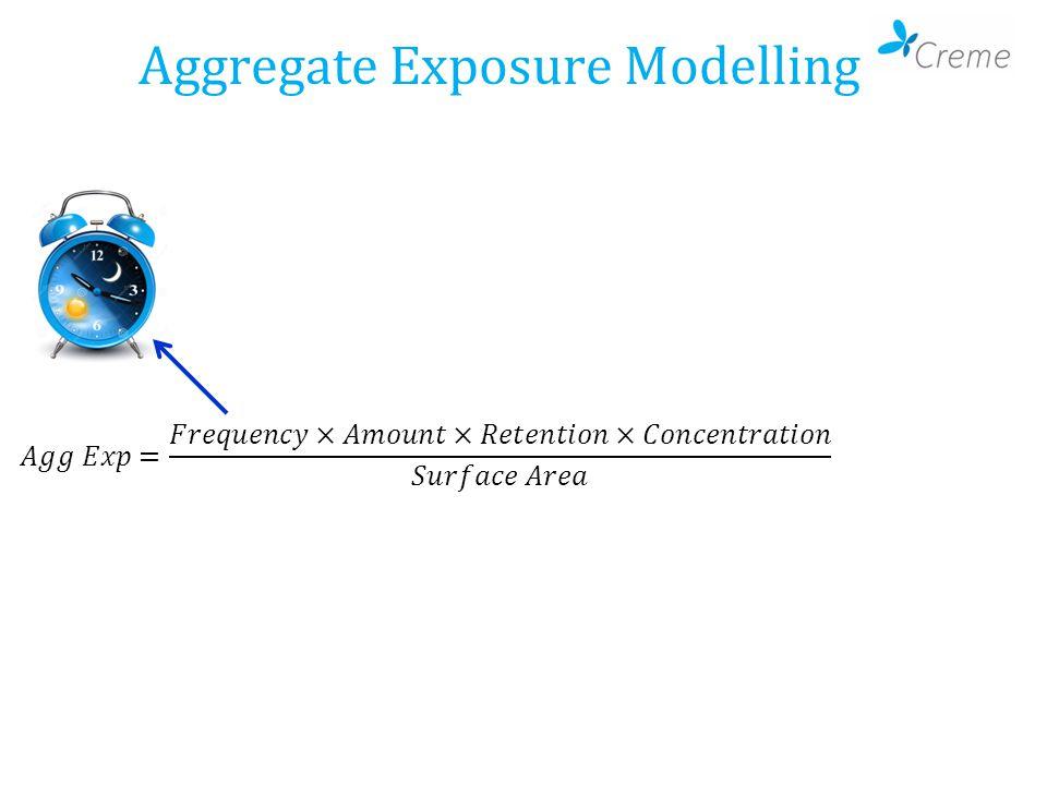 Aggregate Exposure Modelling