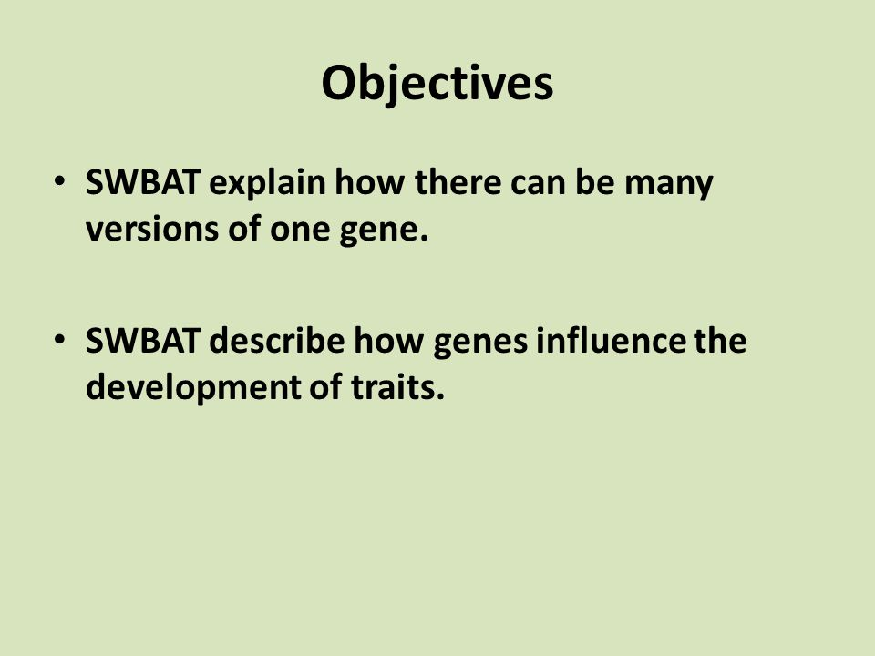 Objectives SWBAT explain how there can be many versions of one gene. SWBAT describe how genes influence the development of traits.