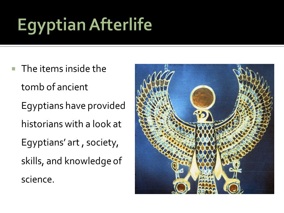  Because of their knowledge and skill, Egyptian physicians were highly respected.