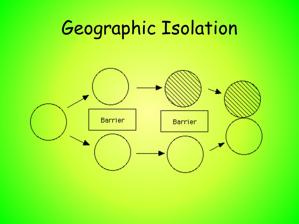 Development of New Species 4 factors that lead to Speciation 3.Migration: Movement of animals from one place to another.