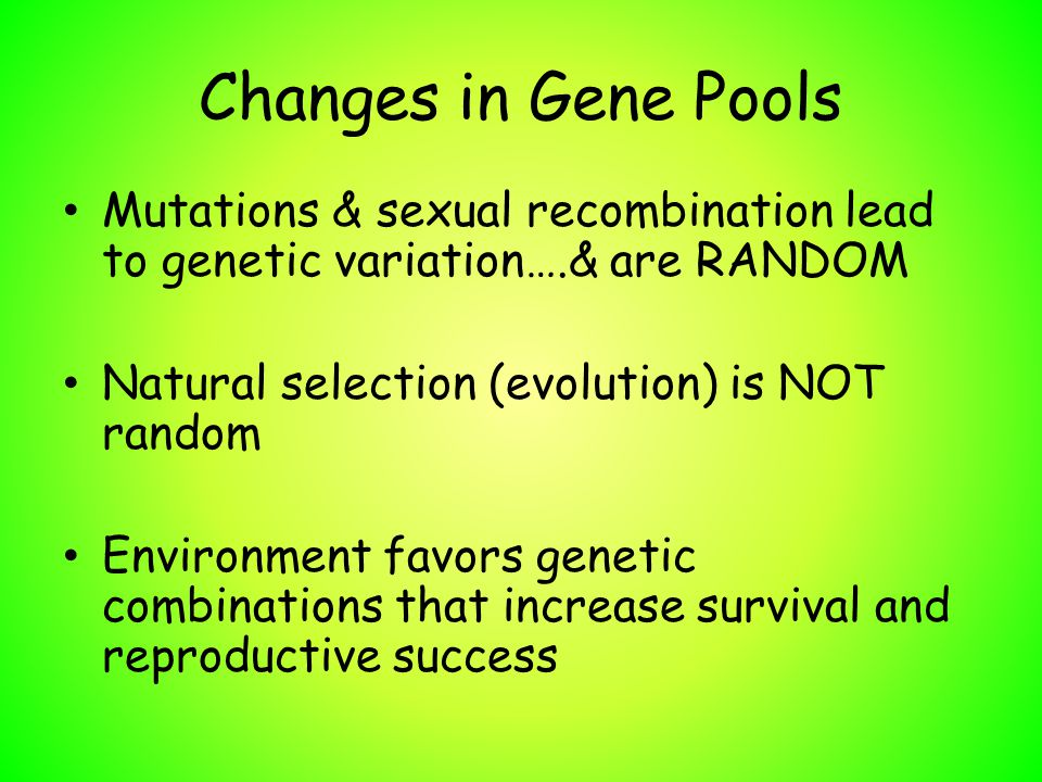 Changes in Gene Pools Mutations & sexual recombination lead to genetic variation….& are RANDOM Natural selection (evolution) is NOT random Environment