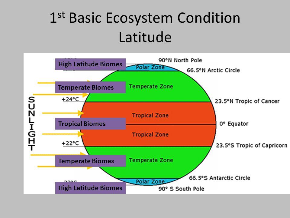 1 st Basic Ecosystem Condition Latitude High Latitude Biomes Temperate Biomes Tropical Biomes High Latitude Biomes Temperate Biomes