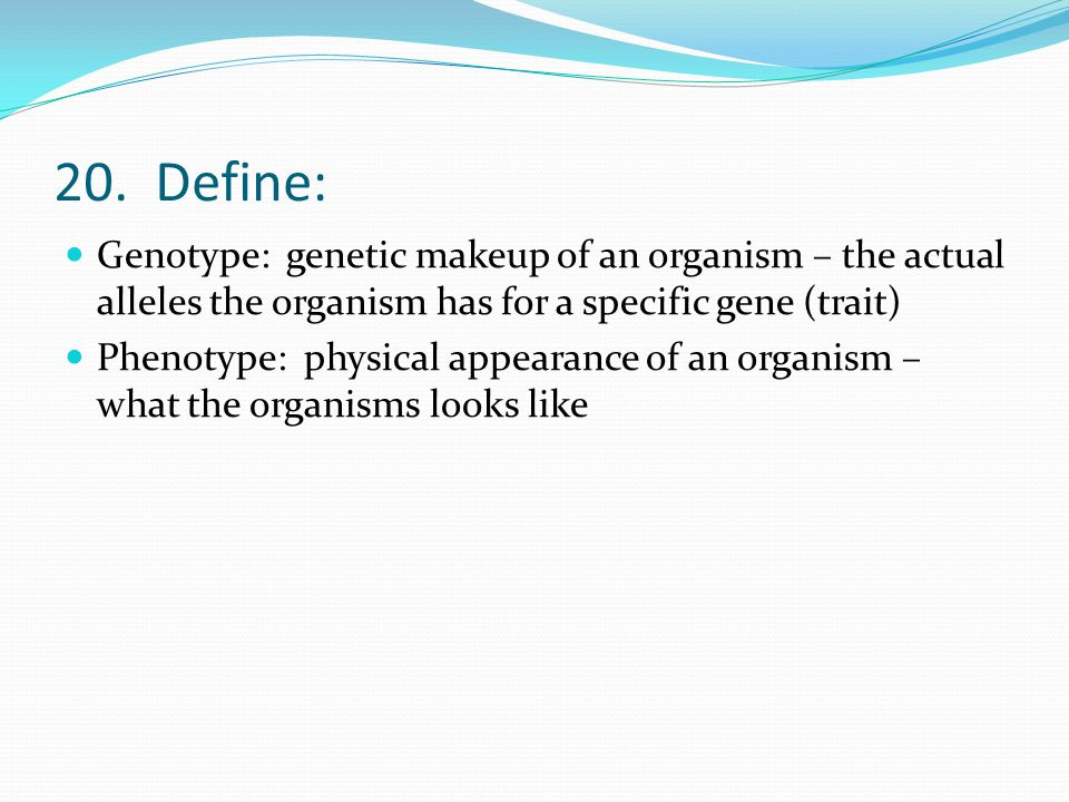 20. Define: Genotype: genetic makeup of an organism – the actual alleles the organism has for a specific gene (trait) Phenotype: physical appearance o