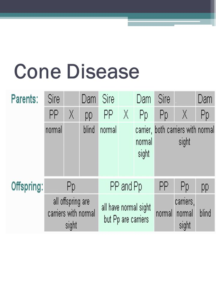 Cone Disease