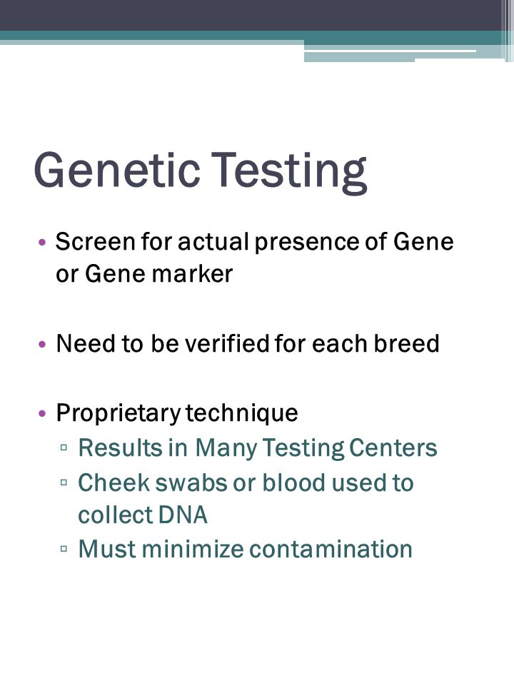 Genetic Testing Screen for actual presence of Gene or Gene marker Need to be verified for each breed Proprietary technique ▫ Results in Many Testing Centers ▫ Cheek swabs or blood used to collect DNA ▫ Must minimize contamination