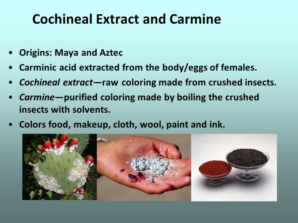 Cochineal Extract and Carmine Origins: Maya and Aztec Carminic acid extracted from the body/eggs of females.
