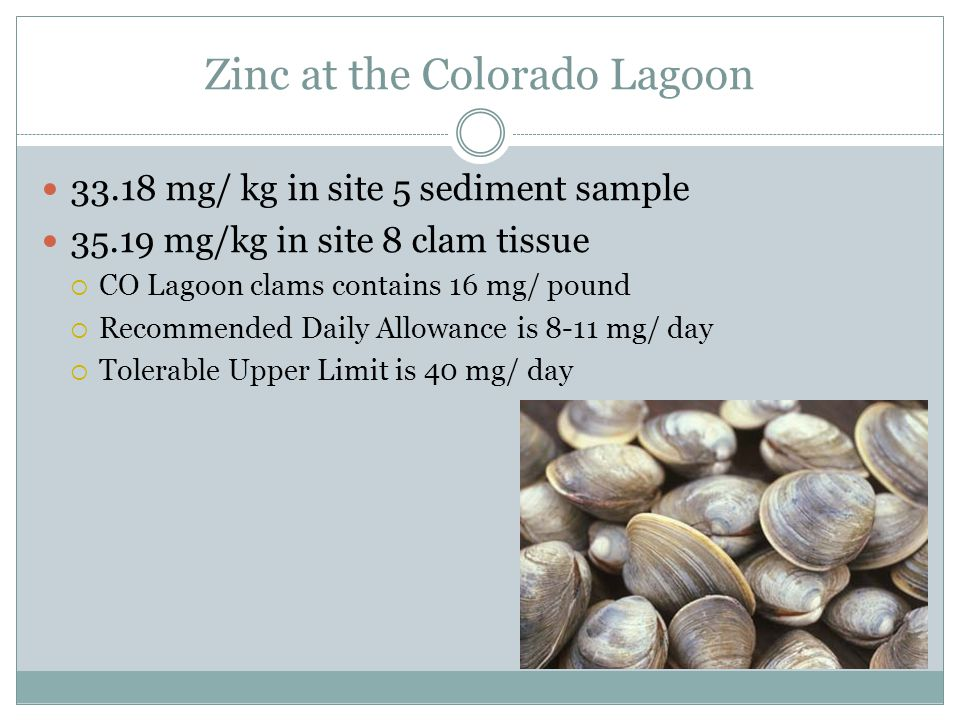 Zinc at the Colorado Lagoon 33.18 mg/ kg in site 5 sediment sample 35.19 mg/kg in site 8 clam tissue  CO Lagoon clams contains 16 mg/ pound  Recommended Daily Allowance is 8-11 mg/ day  Tolerable Upper Limit is 40 mg/ day