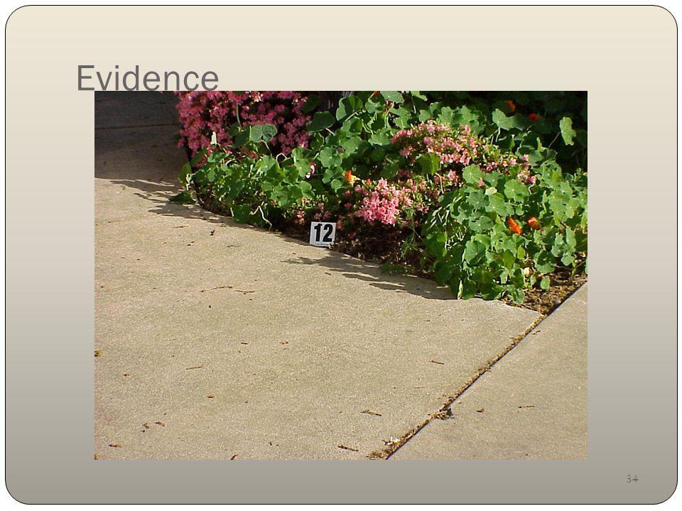 34 Evidence