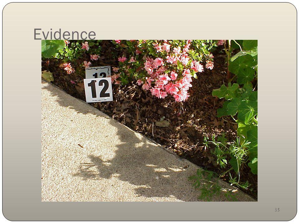 35 Evidence