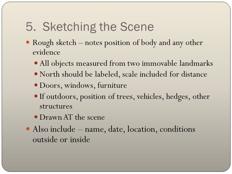 5. Sketching the Scene Rough sketch – notes position of body and any other evidence All objects measured from two immovable landmarks North should be