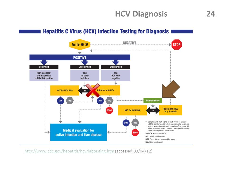 HCV Diagnosis 24 http://www.cdc.gov/hepatitis/hcv/labtesting.htmhttp://www.cdc.gov/hepatitis/hcv/labtesting.htm (accessed 03/04/12)
