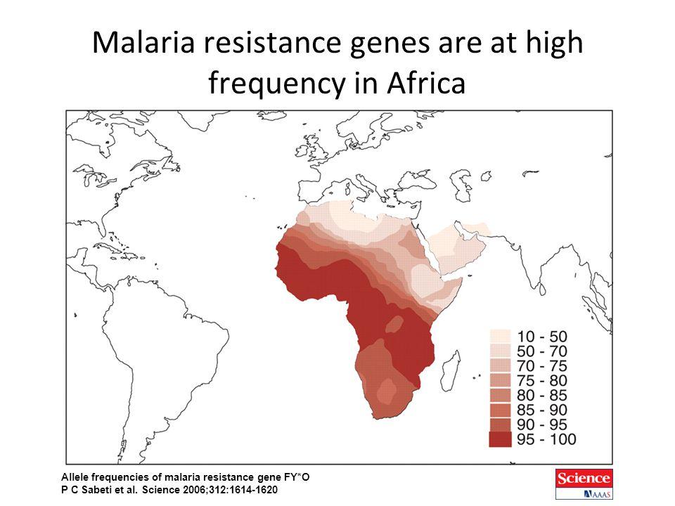 Allele frequencies of malaria resistance gene FY*O P C Sabeti et al.