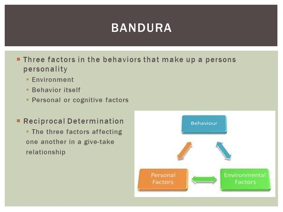  Three factors in the behaviors that make up a persons personality  Environment  Behavior itself  Personal or cognitive factors  Reciprocal Deter