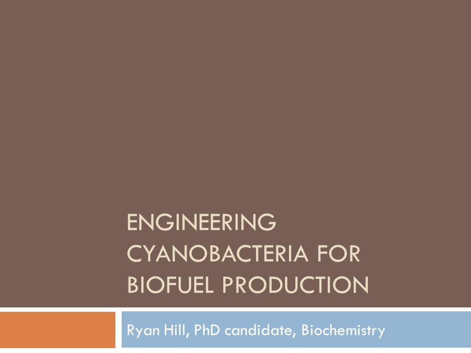 ENGINEERING CYANOBACTERIA FOR BIOFUEL PRODUCTION Ryan Hill, PhD candidate, Biochemistry