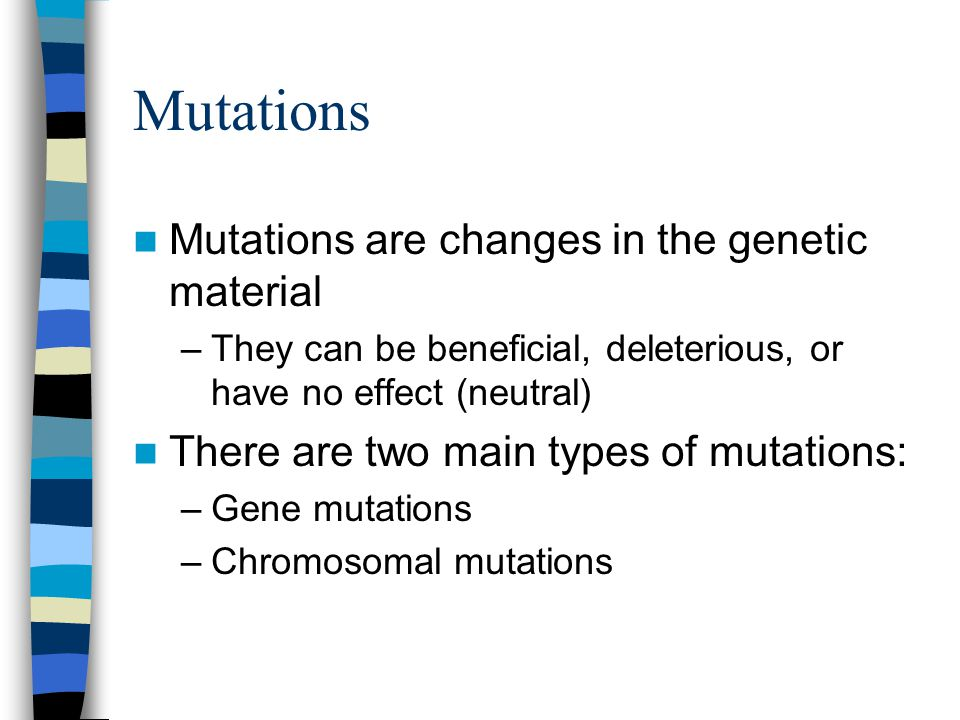 Mutations Mutations are changes in the genetic material –They can be beneficial, deleterious, or have no effect (neutral) There are two main types of mutations: –Gene mutations –Chromosomal mutations