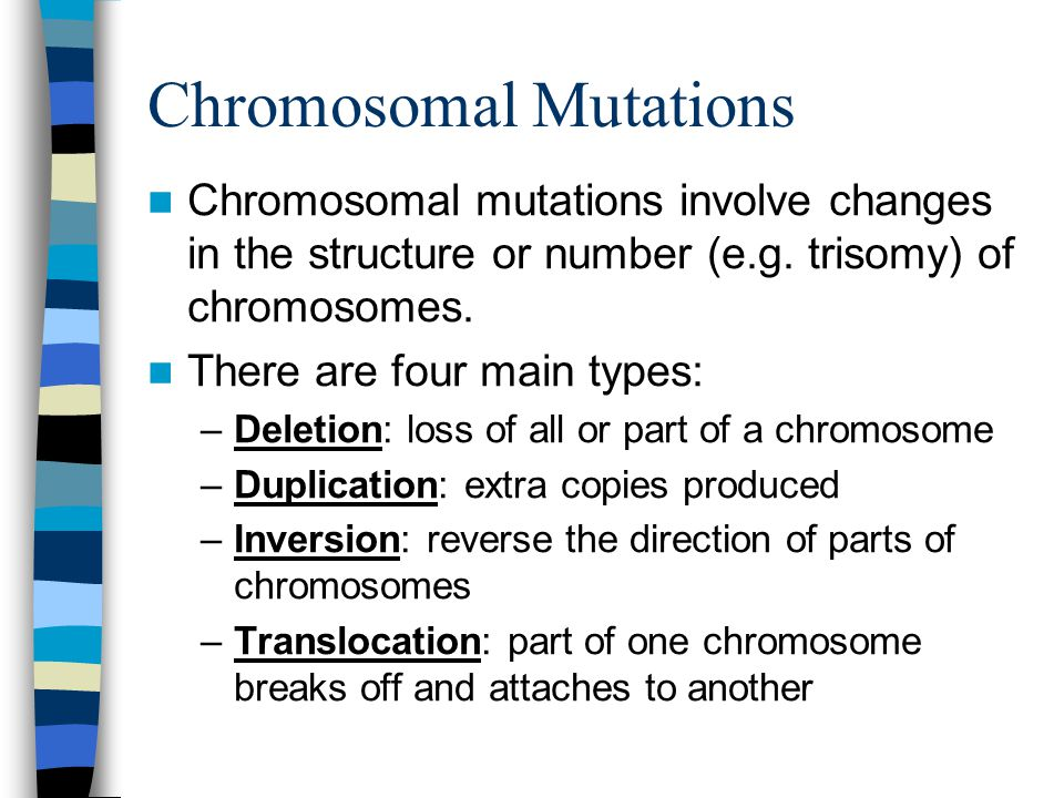 Chromosomal Mutations Chromosomal mutations involve changes in the structure or number (e.g.