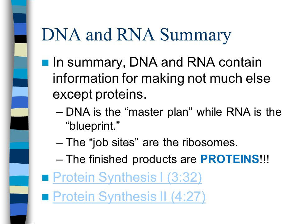 DNA and RNA Summary In summary, DNA and RNA contain information for making not much else except proteins.