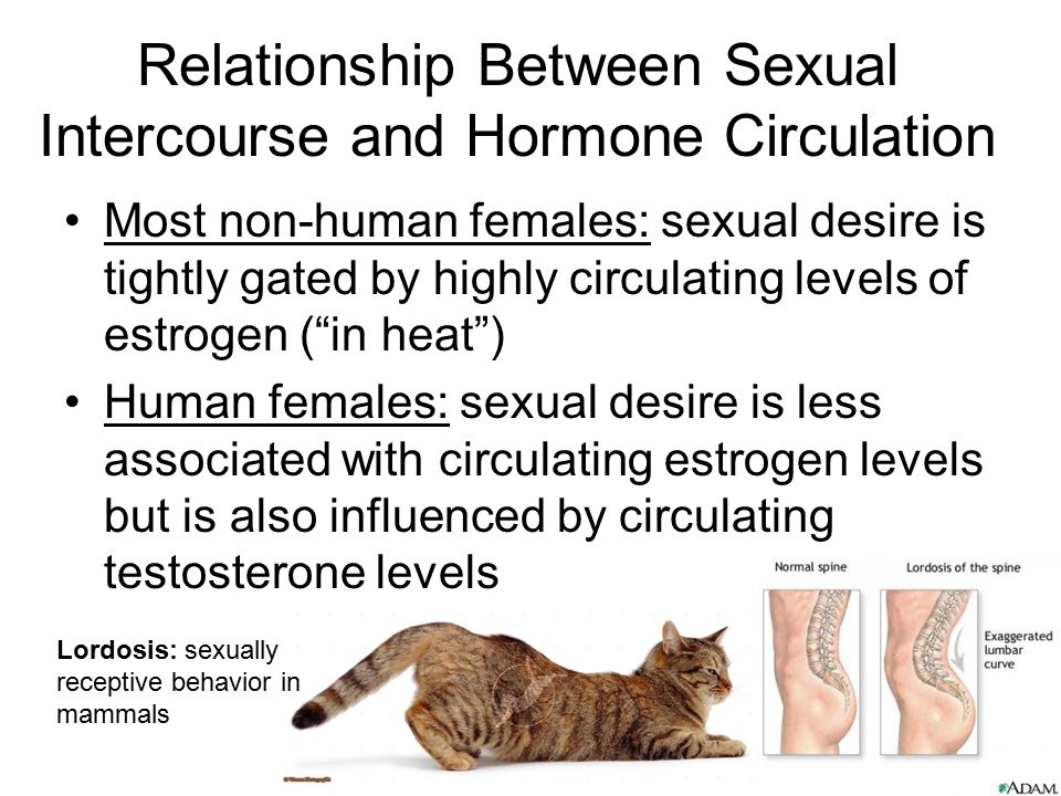 Relationship Between Sexual Intercourse and Hormone Circulation Most non-human females: sexual desire is tightly gated by highly circulating levels of
