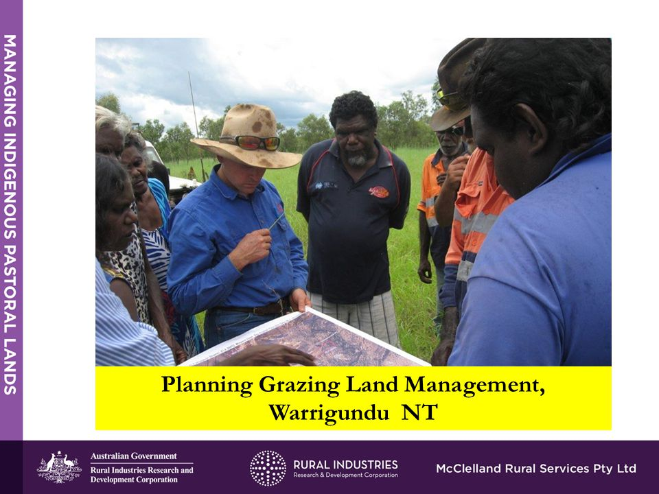 STRENGTHS Planning Grazing Land Management, Warrigundu NT