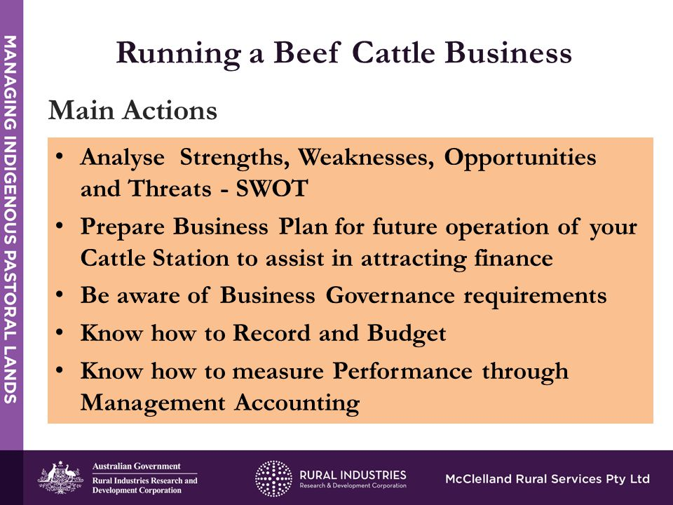 Analyse Strengths, Weaknesses, Opportunities and Threats - SWOT Prepare Business Plan for future operation of your Cattle Station to assist in attracting finance Be aware of Business Governance requirements Know how to Record and Budget Know how to measure Performance through Management Accounting Main Actions
