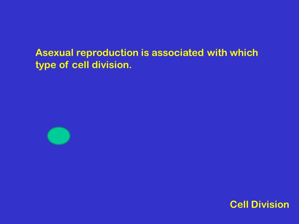 Asexual reproduction is associated with which type of cell division. Cell Division