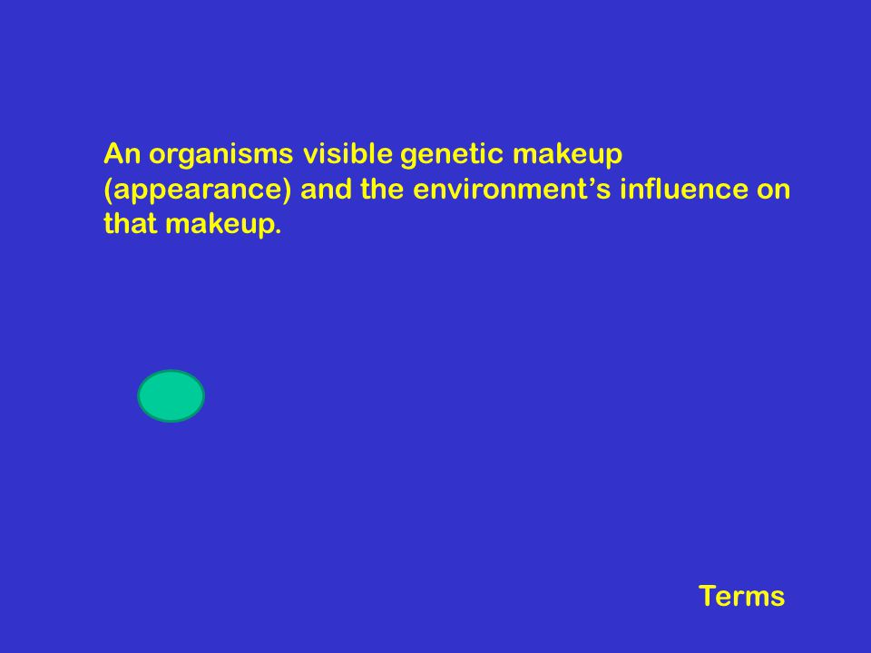 An organisms visible genetic makeup (appearance) and the environment's influence on that makeup.