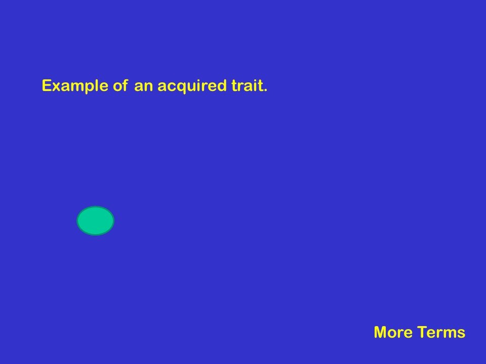 Example of an acquired trait. More Terms