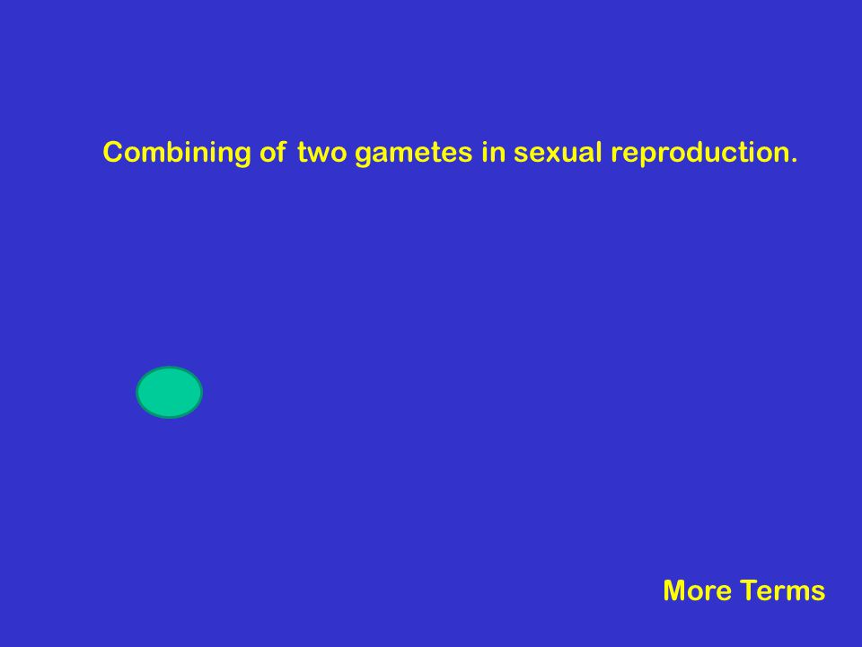 Combining of two gametes in sexual reproduction. More Terms
