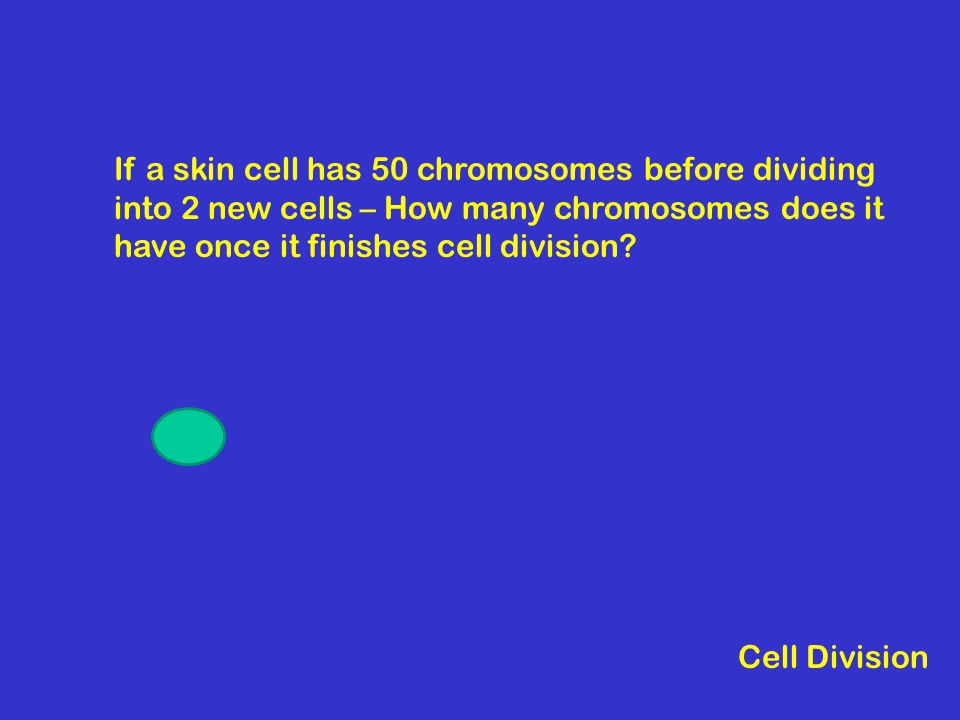 If a skin cell has 50 chromosomes before dividing into 2 new cells – How many chromosomes does it have once it finishes cell division.